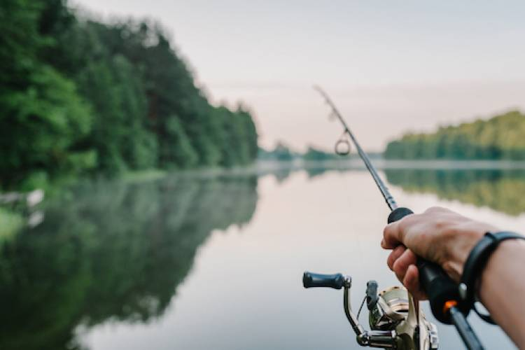 person casting a line going fishing in a pond